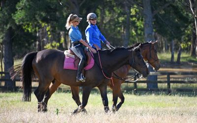 Trail Riding Tips