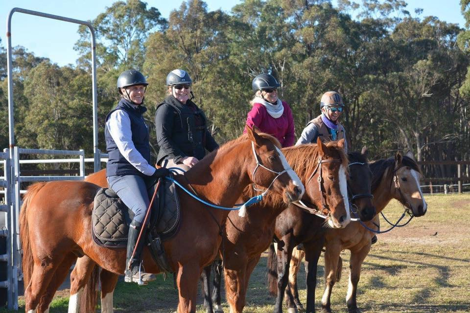 Savvy Horse Play in the Blue Mountains