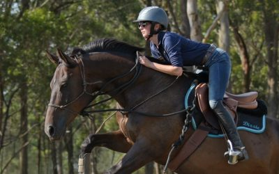 My horse is a true testament to the Parelli Program