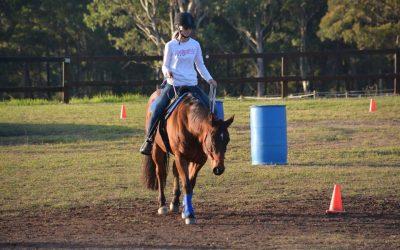My Parelli Horsemanship Story, so far….