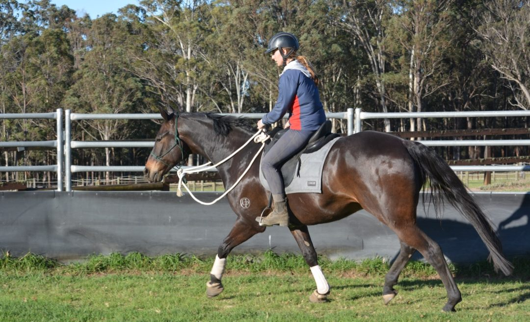 Control & Confidence in the Saddle Clinic, May 15-16 2021