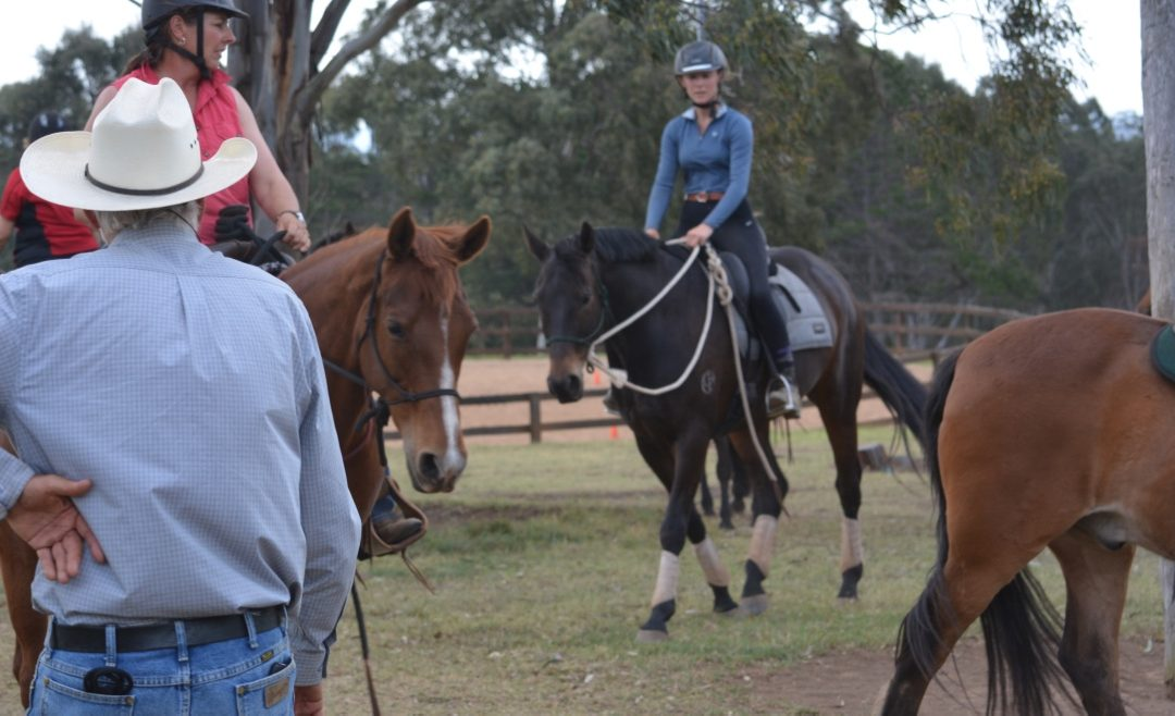 Saturday Workshop – Freestyle Riding, Confidence in the Saddle, 1st February 2020